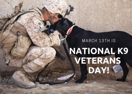 March 13th is National K9 Veteran's Day